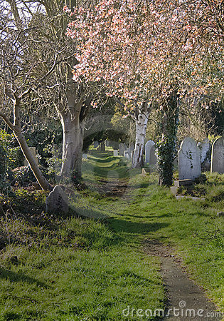 Free Graveyard Walkway Royalty Free Stock Photography - 4551287