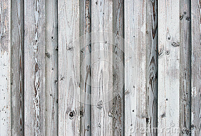 Gray Barn Board Background Stock Photo Image 33017190