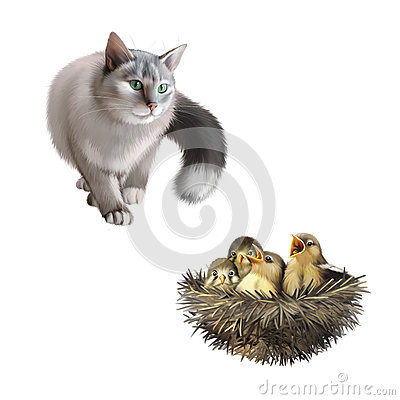 Free Gray Cat With Green Eyes Hunting, Baby Sparrows In Stock Images - 51248874