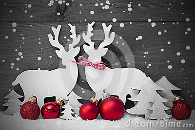 Gray Christmas Decoration, Reindeer Couple, Snowflakes, Red Ball Stock Photo
