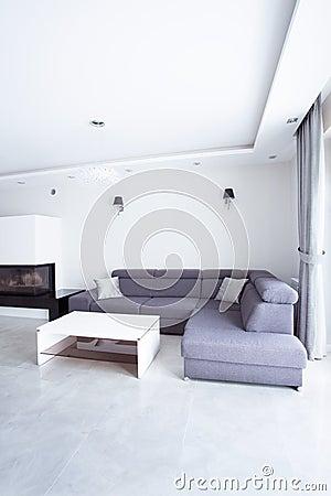 Free Gray Corner Sofa Stock Photo - 50700370