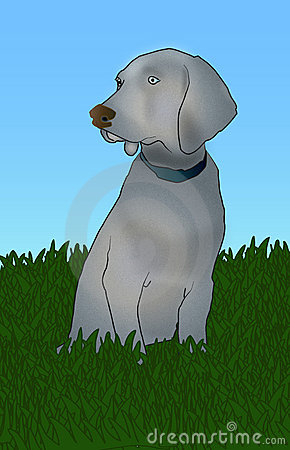 Gray dog in grass illustration