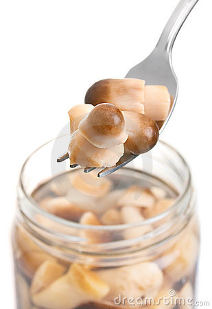 Gray edible salted mushroom