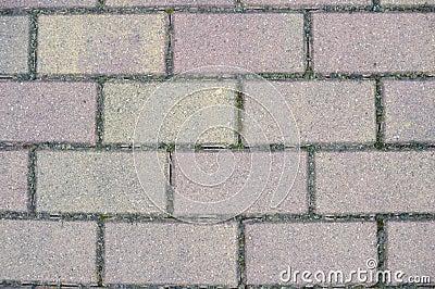 Gray paving slabs