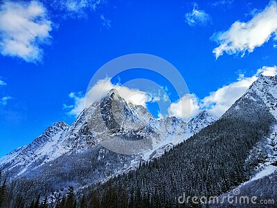 Gray Rocky Mountain Beside Pine Tree Under Blue Cloudy Sky During Day Time Free Public Domain Cc0 Image
