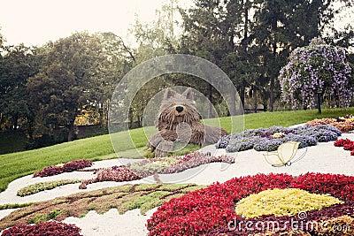 Gray wolf flower sculpture – Flower show in Ukraine, 2012 Editorial Stock Photo