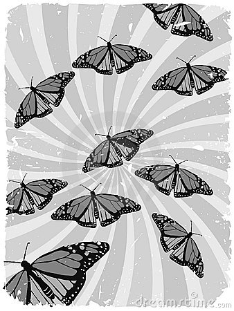 Grayscale Butterflies Swirl Grungy Illustrations