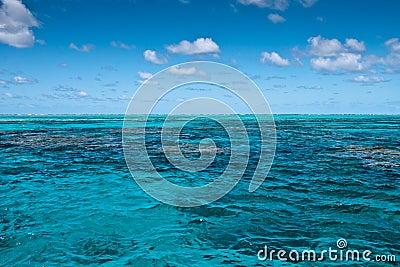 Great Barrier Reef near Port Douglas