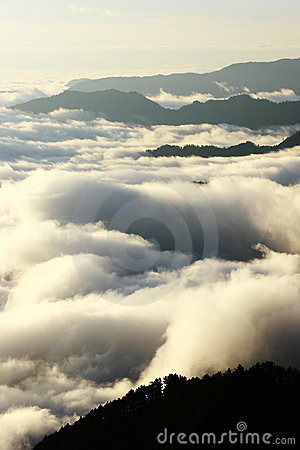 Great sea of clouds with golden sunshine