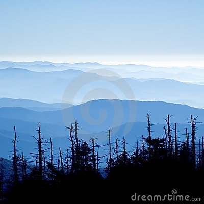 Free Great Smoky Mountains National Park Royalty Free Stock Image - 7234386
