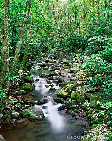 Free Great Smoky Mountains National Park, Tennessee Stock Image - 9287811