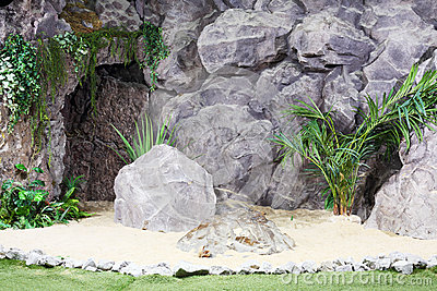 Great stones, sand, palm trees and other plants