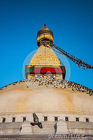 The Great stupa