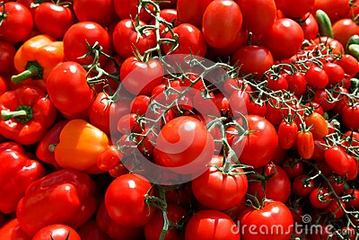 Great Tomatos