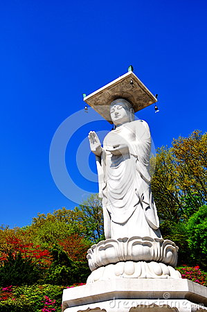 Great white buddha statue in Korea