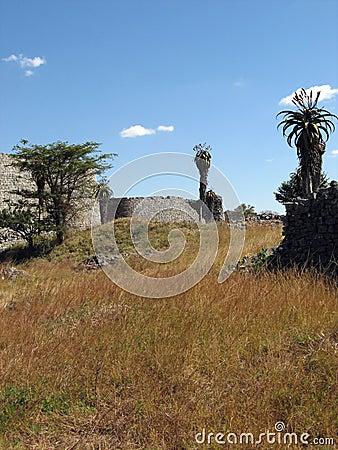 Great Zimbabwe enclosure