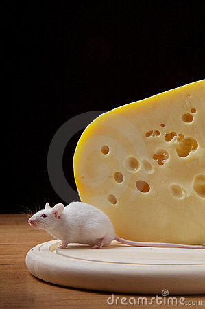 Greedy mouse and cheese