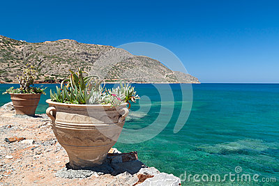 Greek flowers with blue sea