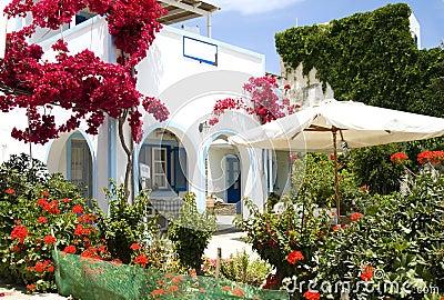 Greek island architecture beautiful flower garden