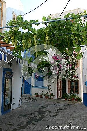 Greek Islands Scene