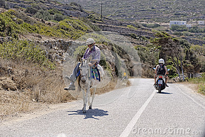Greek man on mule