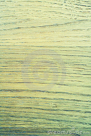 Green abstract wood texture