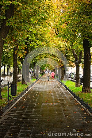 Free Green Alley Stock Photography - 45398192