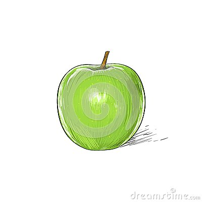 Free Green Apple Sketch Draw Isolated Over White Royalty Free Stock Photography - 50404687