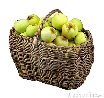 Green apples in basket isolated