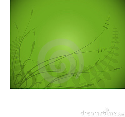 Green Background Foliage