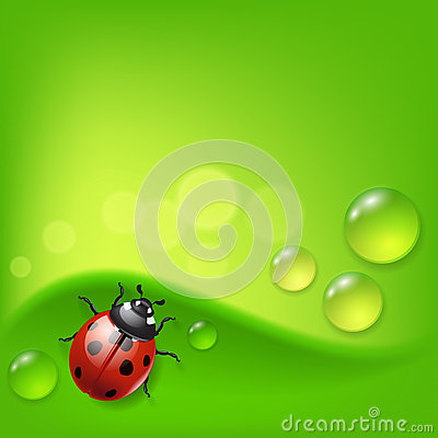 Green background with ladybird and dew