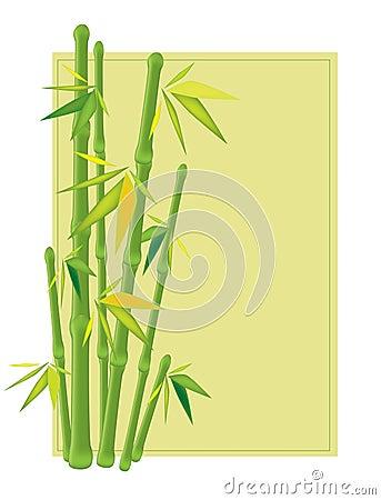 A green bamboo