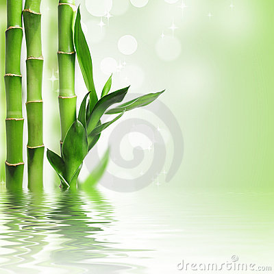 Free Green Bamboo Background Royalty Free Stock Photos - 18180988