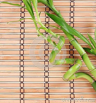 Green bamboo on bamboo mat