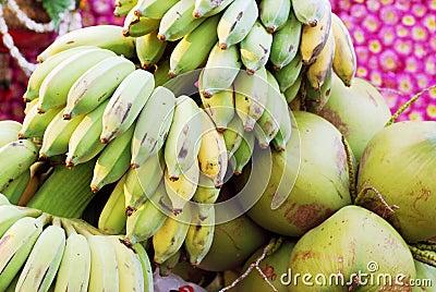 Green bananas and coconuts