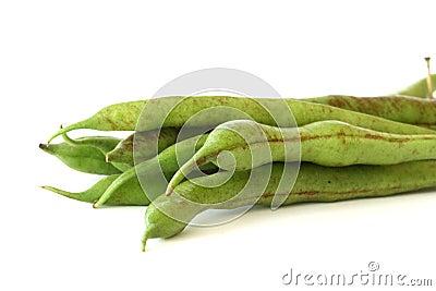 Green bean pods detail