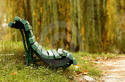 Green bench in woods