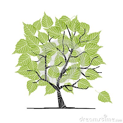 Green birch tree for your design