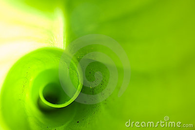 Green blur abstract