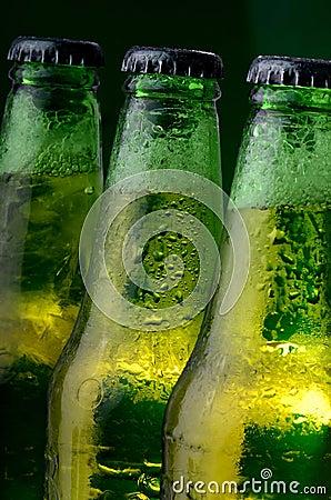 Green bottles of beer