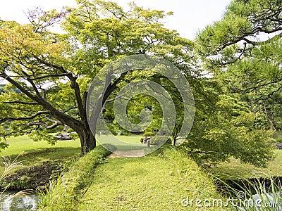 Green bridge in Riykugien Garden, Tokyo