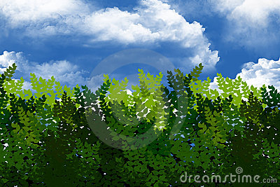 Green bushes in the sky.
