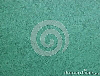 Green Cardboard