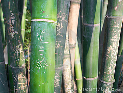 Green carved bamboo