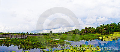 Green Cay Wetlands Panorama