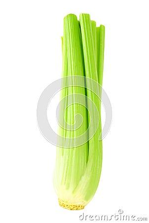Green celery full
