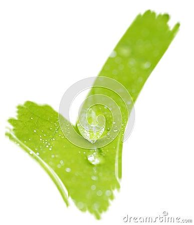 Green check mark tick