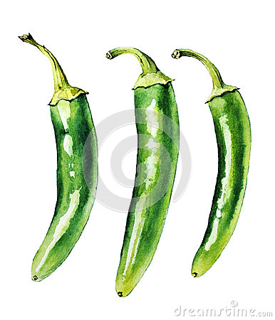 Free Green Chilly Peppers Royalty Free Stock Image - 36310736