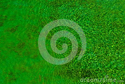 Green Clear Water Stock Photo - Image: 15115730
