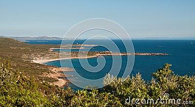 Green coast of Corsica